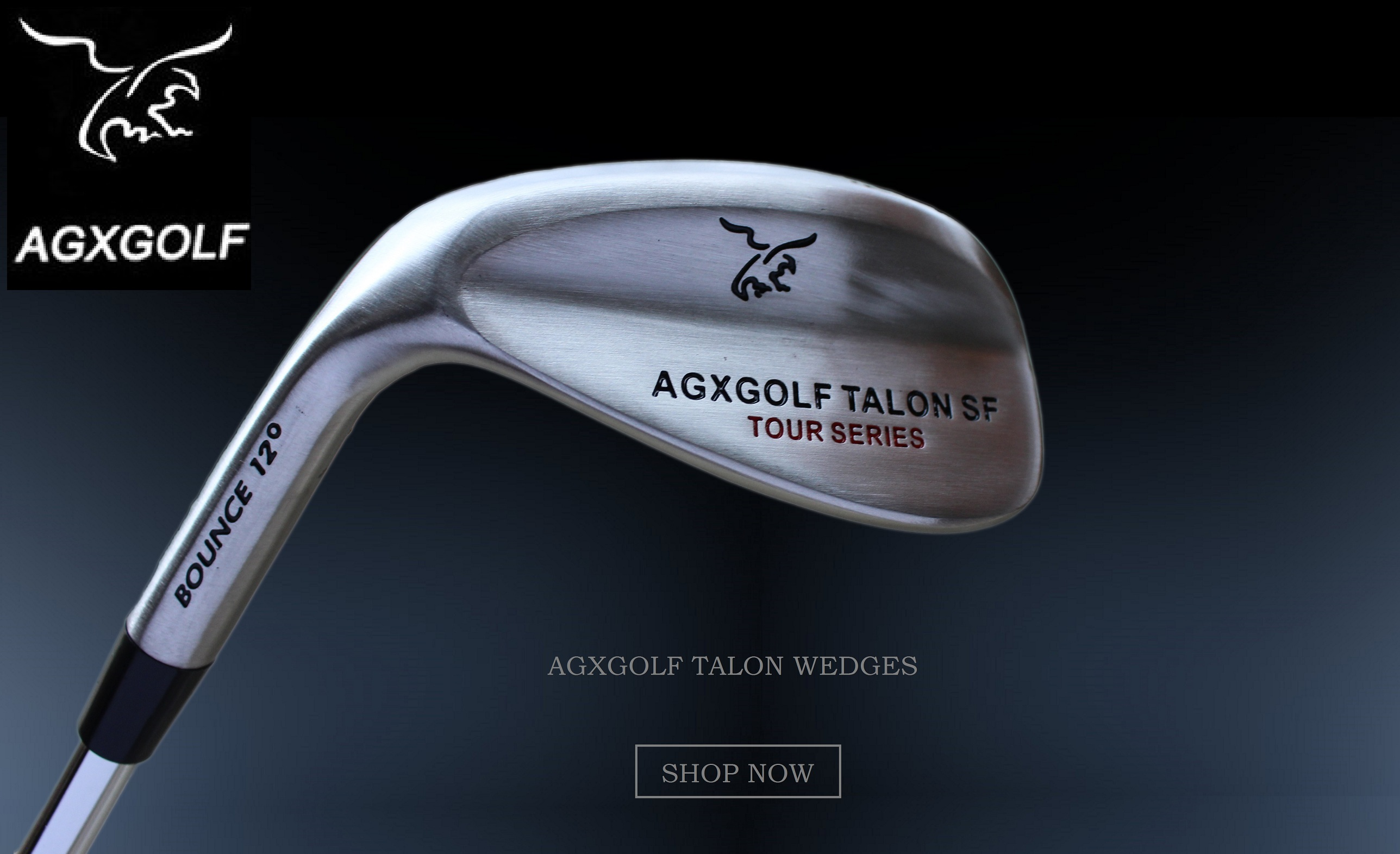 AGXGOLF TALON WEDGES